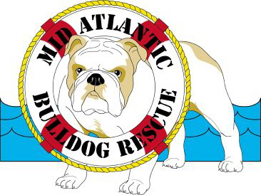 NORTHEAST USA- Midatlantic Bulldog Rescue